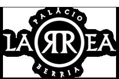 palaciolarreaberria.com